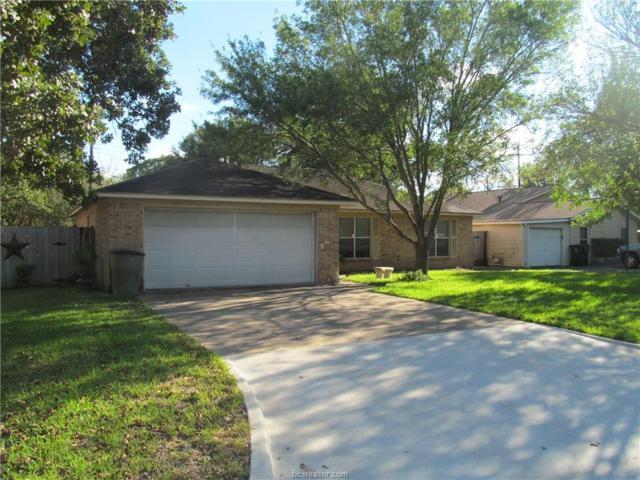 1007 Mistywood Court, Bryan, TX 77801 (MLS #18016290) :: Platinum Real Estate Group