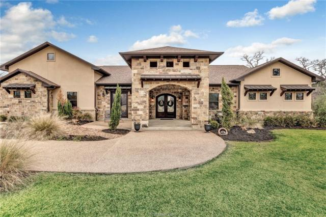 18067 Martingale Court, College Station, TX 77845 (MLS #19000470) :: Chapman Properties Group
