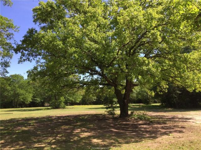 9085 Hoke Lane, Marquez, TX 77865 (MLS #19000946) :: Treehouse Real Estate