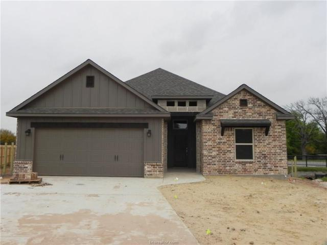 2702 Colony Vista Court, Bryan, TX 77808 (MLS #19001441) :: RE/MAX 20/20