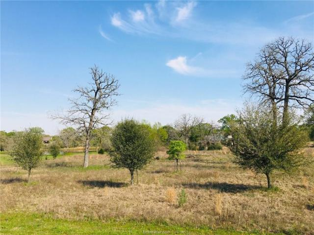 9607 Wales Court, Iola, TX 77861 (MLS #19004261) :: NextHome Realty Solutions BCS