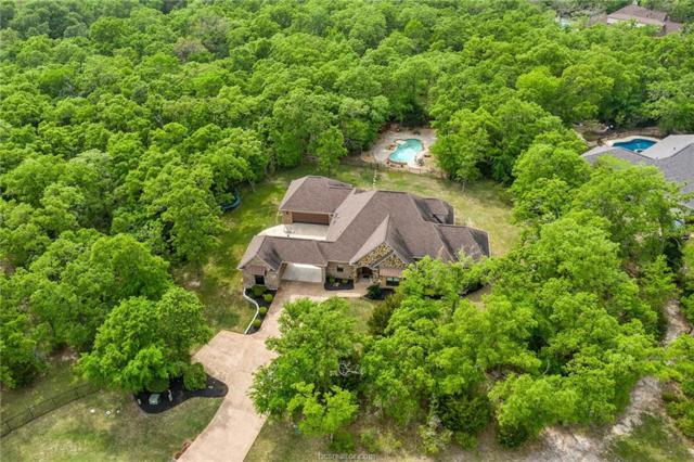 3325 Mojave Canyon Drive, College Station, TX 77845 (MLS #19004325) :: Treehouse Real Estate