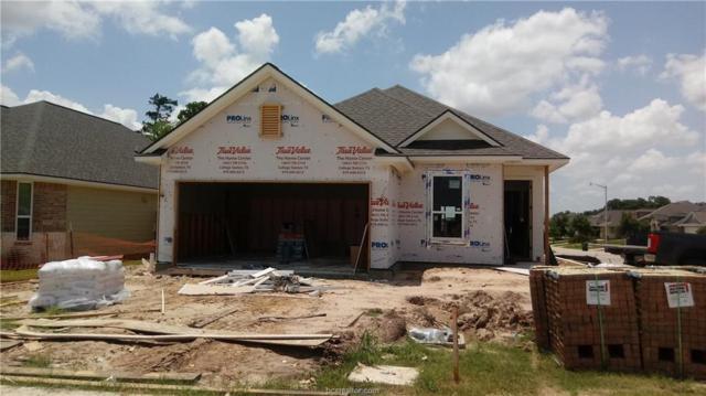 2163 Mountain Wind Loop, Bryan, TX 77807 (MLS #19004505) :: Treehouse Real Estate