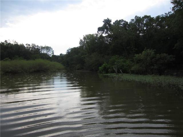 Lots 4-7 Lcr 915, Lake Limestone, TX 76642 (MLS #19006147) :: Treehouse Real Estate