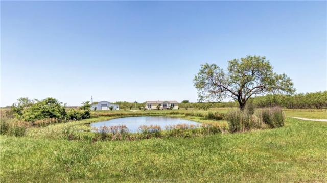 8204 Bickham Cemetery Road, Bryan, TX 77808 (MLS #19007808) :: The Lester Group