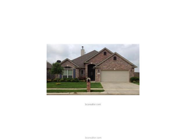 15600 Wood Brook Lane, College Station, TX 77845 (MLS #19009669) :: Treehouse Real Estate