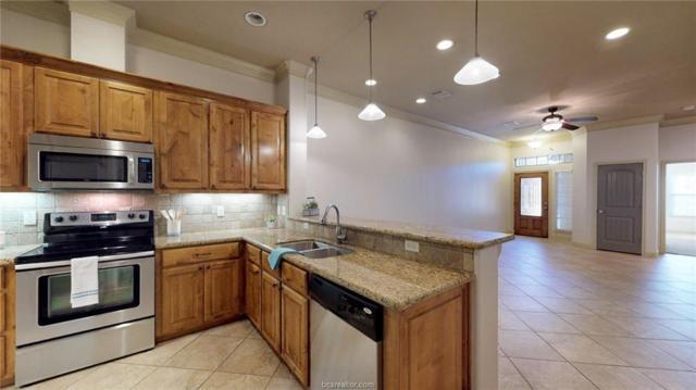 3805 Blackhawk Lane, College Station, TX 77845 (MLS #19009804) :: BCS Dream Homes