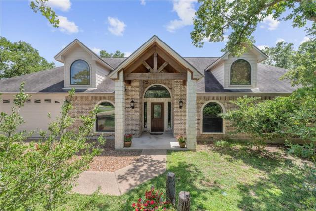18264 Wigeon Trail Drive, College Station, TX 77845 (MLS #19010102) :: Cherry Ruffino Team