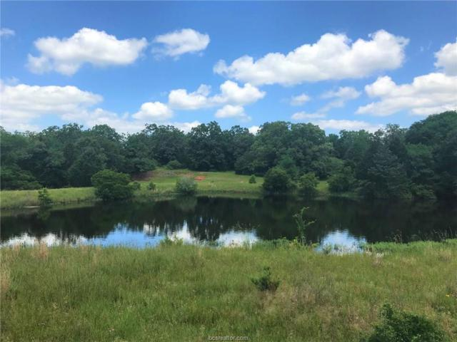TBD County Rd 456  (51Ac), Normangee, TX 77871 (MLS #19010785) :: Treehouse Real Estate