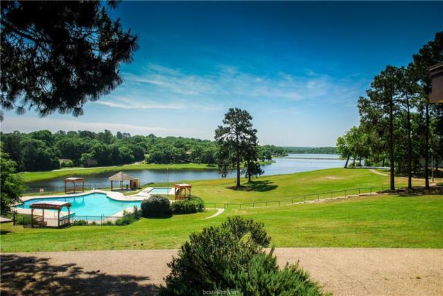 00 Valley View Drive, Hilltop Lakes, TX 77871 (MLS #19010969) :: The Shellenberger Team