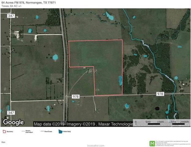64 Acres Fm 978, Normangee, TX 77871 (MLS #19012606) :: BCS Dream Homes