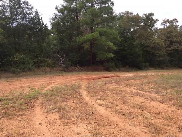 00 Aransas Lane, Hilltop Lakes, TX 77871 (MLS #19014949) :: Treehouse Real Estate