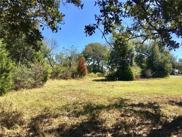 Lot 278 Leigh Court, Iola, TX 77861 (MLS #19015230) :: NextHome Realty Solutions BCS