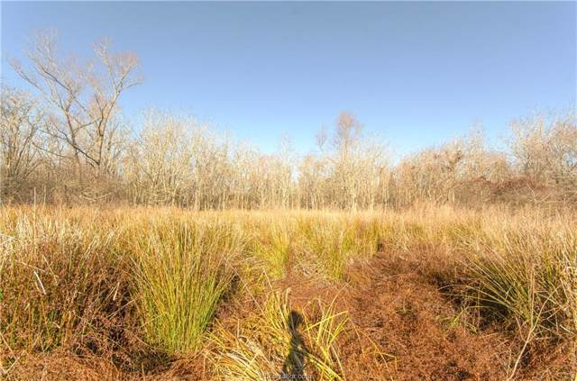 12.76 Acres Private Road 1360, Centerville, TX 75833 (MLS #20000011) :: Treehouse Real Estate
