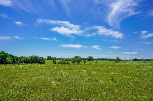 10 Anderson Ridge Lane, Anderson, TX 77830 (MLS #20000396) :: Treehouse Real Estate