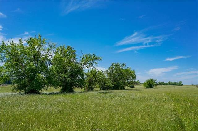 16 Anderson Ridge Lane, Anderson, TX 77830 (MLS #20000411) :: Treehouse Real Estate