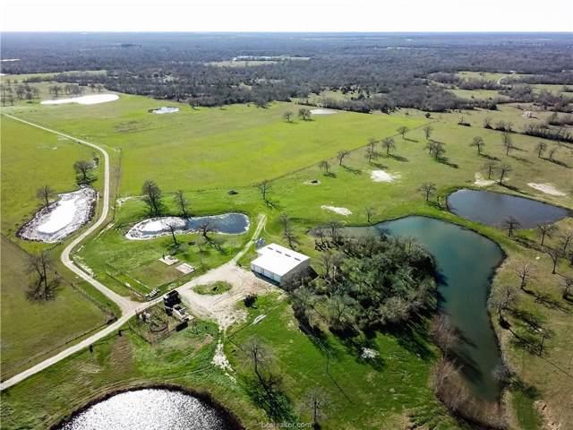 13191 Fm 1372 Road, North Zulch, TX 77872 (MLS #20001177) :: BCS Dream Homes