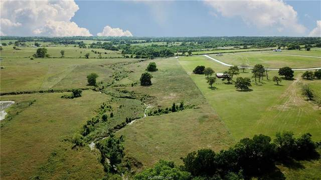 0025 County Road 220, Anderson, TX 77830 (MLS #20008526) :: Chapman Properties Group