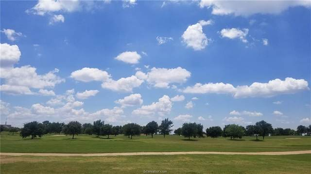4713 Miramont Circle, Bryan, TX 77802 (MLS #20010432) :: The Lester Group
