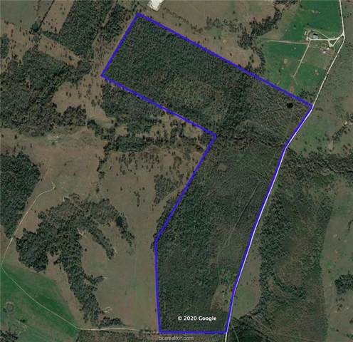 5753 County Road 103, Iola, TX 77861 (MLS #20017895) :: The Lester Group
