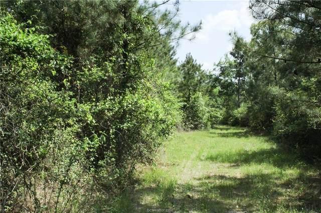 0013 County Road 304, Navasota, TX 77868 (MLS #21004533) :: RE/MAX 20/20