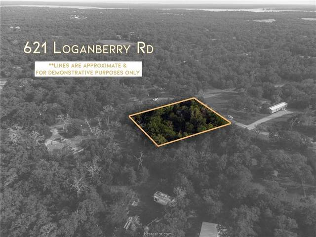 621 Loganberry Road, Somerville, TX 77879 (MLS #21005311) :: The Lester Group