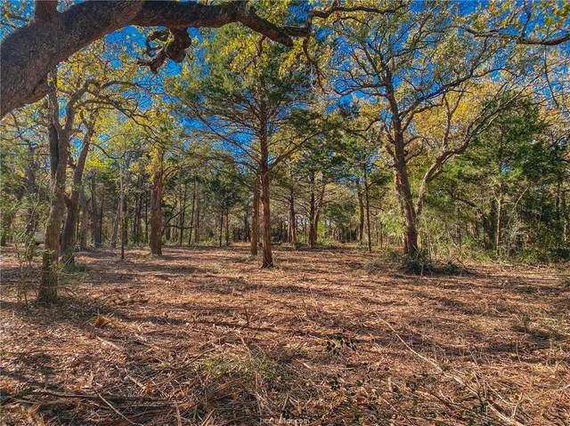 TBD (18.98 Acres) Fm 1697, Ledbetter, TX 78946 (MLS #21007429) :: Chapman Properties Group
