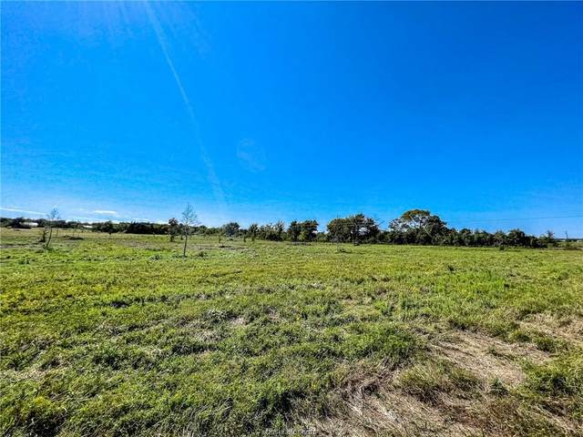 Lot 1 County Road 219, Anderson, TX 77830 (MLS #21013627) :: NextHome Realty Solutions BCS