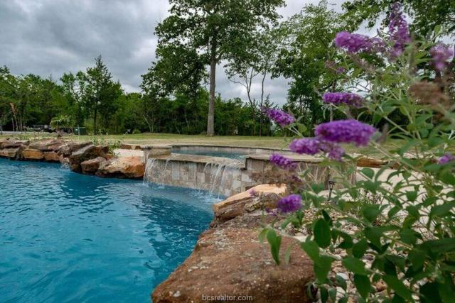 6560 Olympia Buddy Road, College Station, TX 77845 (MLS #17009585) :: The Tradition Group