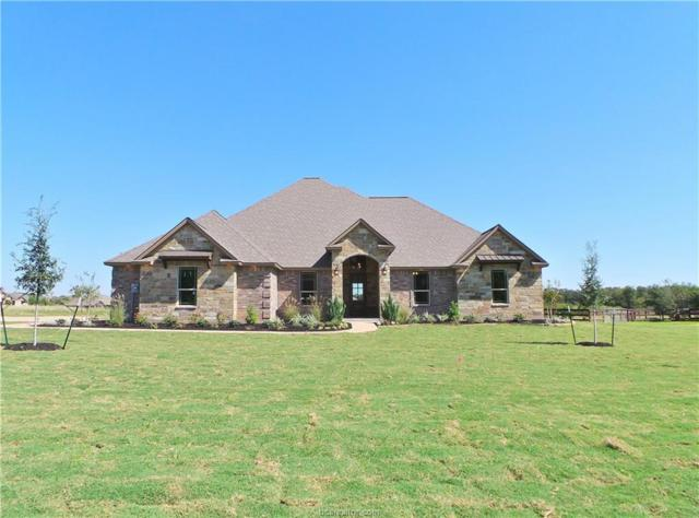 5193 Mandarin Way, College Station, TX 77845 (MLS #17010048) :: Cherry Ruffino Realtors