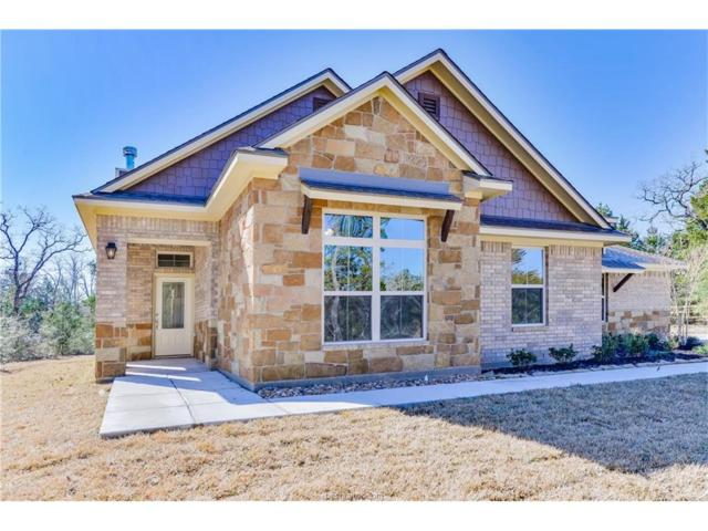 17228 Cedar Springs Court, College Station, TX 77845 (MLS #17013233) :: The Tradition Group