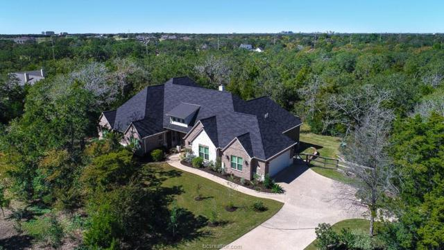 5217 Ruddy Duck Drive, College Station, TX 77845 (MLS #17015867) :: RE/MAX 20/20