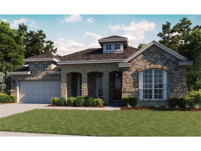 3407 Dovecote Way, Bryan, TX 77808 (MLS #17017517) :: The Lester Group