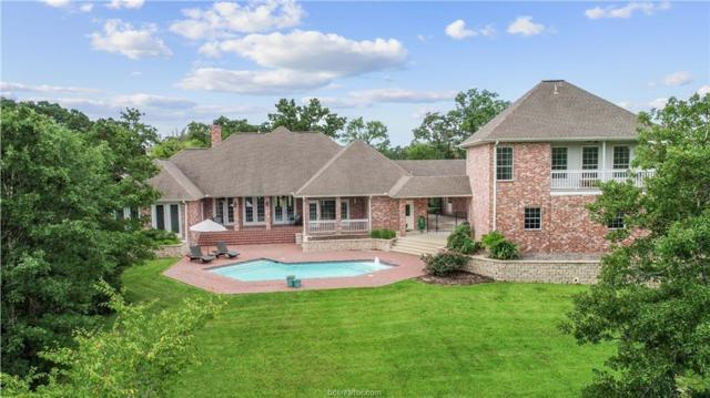 3201 Elm Creek Court, Bryan, TX 77807 (MLS #18013984) :: Platinum Real Estate Group