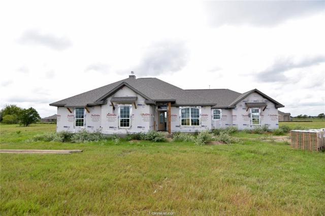 4232 Foxtail Court, Bryan, TX 77808 (MLS #18014108) :: Chapman Properties Group