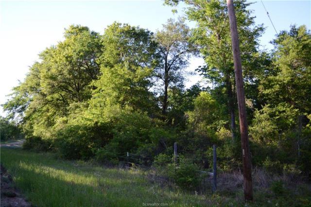 000 S Swan Lake Drive, Caldwell, TX 77836 (MLS #19006582) :: Treehouse Real Estate
