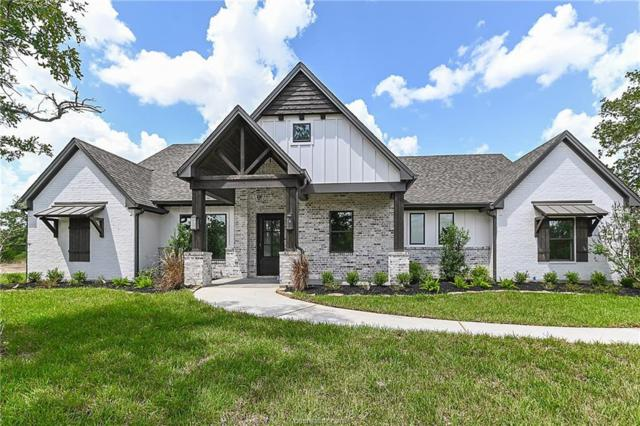 3013 Sandia Springs Cove, College Station, TX 77845 (MLS #19008247) :: Chapman Properties Group