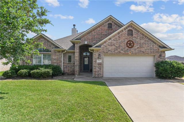 15600 Wood Brook Lane, College Station, TX 77845 (MLS #19009669) :: BCS Dream Homes