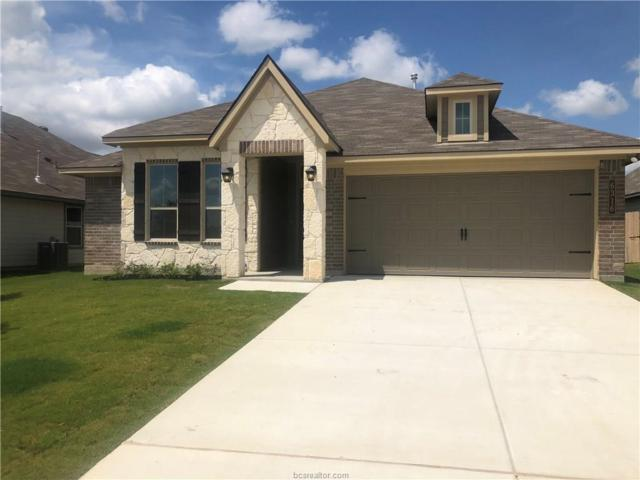 6316 Daytona Drive, College Station, TX 77845 (MLS #19009740) :: RE/MAX 20/20