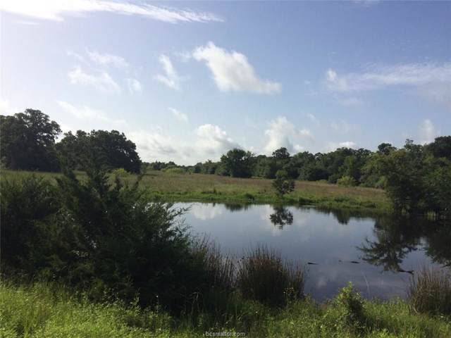 9744 Hottell Road, Wheelock, TX 77856 (MLS #19010629) :: Treehouse Real Estate