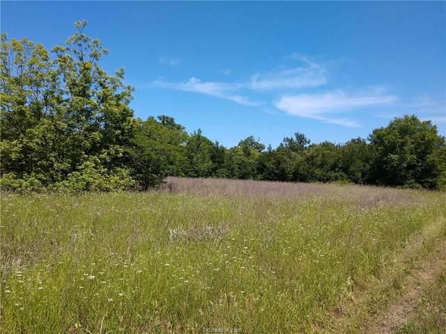 17575 River Lake Pvt Road, Bryan, TX 77808 (MLS #20005853) :: Treehouse Real Estate