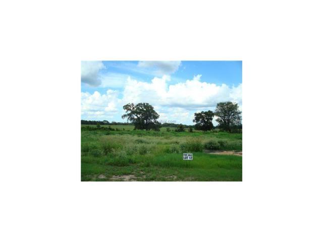 7725 Holligan Trail, Bryan, TX 77808 (MLS #100326) :: Platinum Real Estate Group