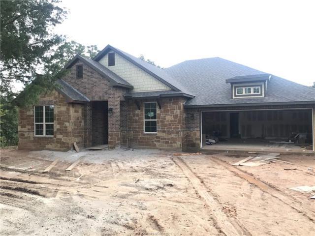 17340 Cedar Springs Court, College Station, TX 77845 (MLS #18012467) :: Platinum Real Estate Group