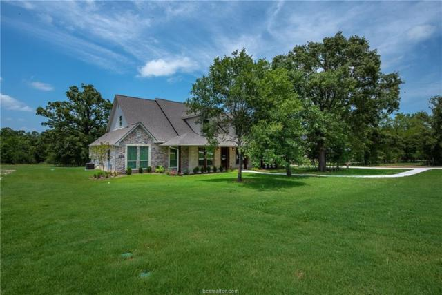 10869 Lonesome Dove Trail, Bryan, TX 77808 (MLS #19006220) :: Cherry Ruffino Team