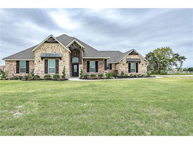 4700 Blazing Trail, Bryan, TX 77808 (MLS #16002248) :: Cherry Ruffino Realtors