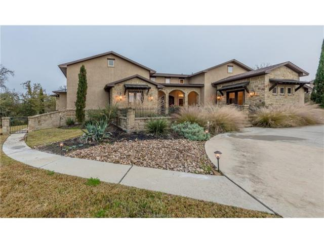 17651 Ranch House Court, College Station, TX 77845 (MLS #17018889) :: The Tradition Group