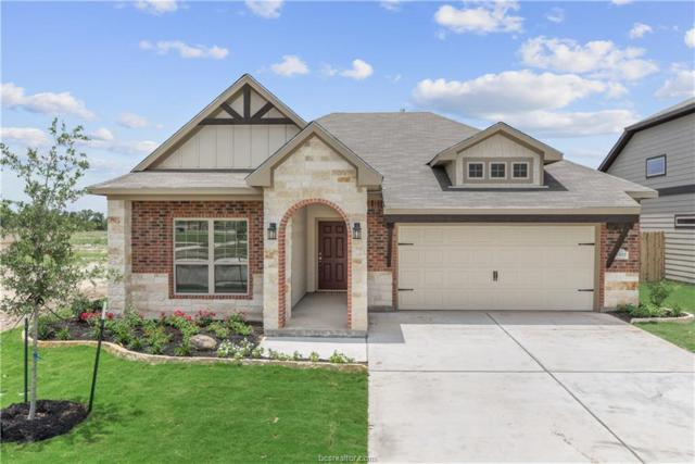 6322 Eldora Drive, College Station, TX 77845 (MLS #19001391) :: RE/MAX 20/20
