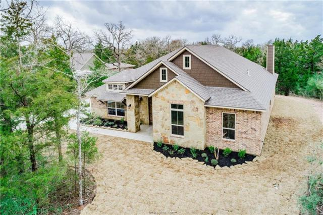 17284 Cedar Springs Court, College Station, TX 77845 (MLS #17014401) :: The Tradition Group