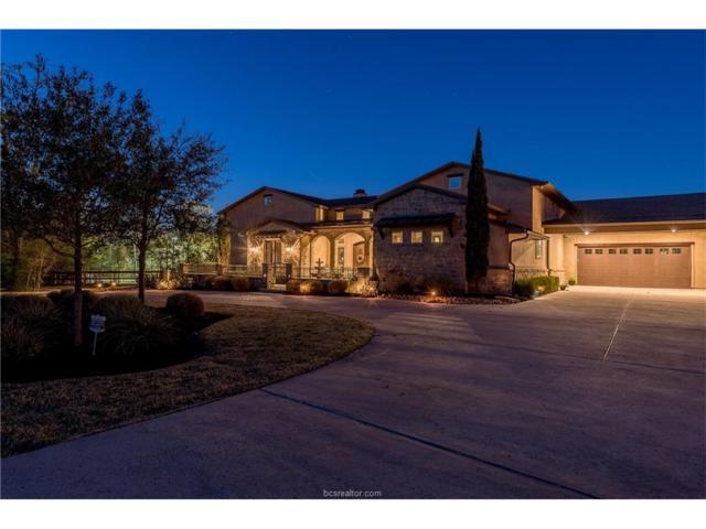 17651 Ranch House Court, College Station, TX 77845 (MLS #17018889) :: Cherry Ruffino Realtors
