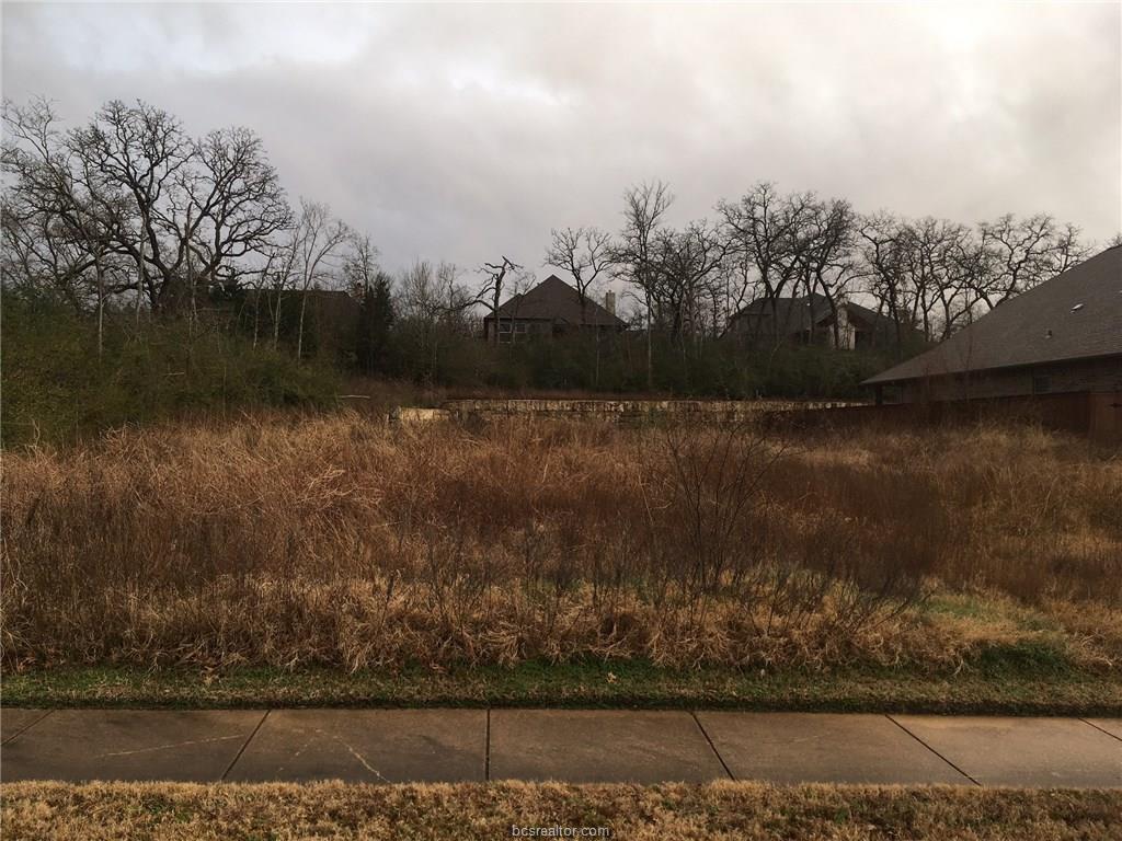 3218 Walnut Creek Court - Photo 1